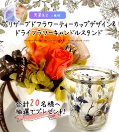 天菜(あな)先生からのプレゼント