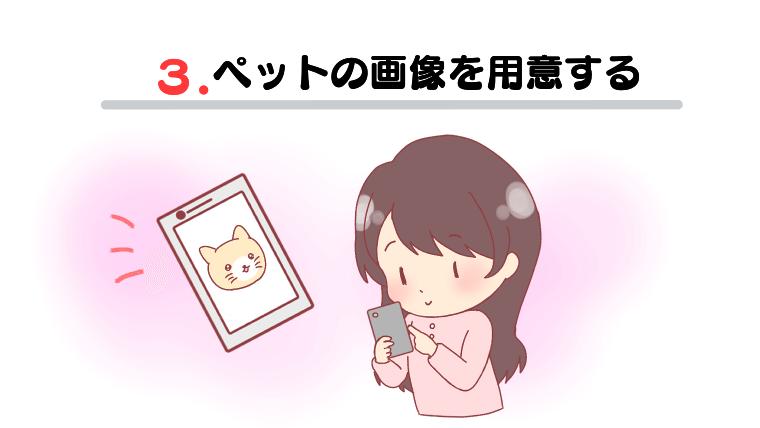 ペットの画像を用意する